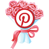 Clearly-Class-Social-Icons-2014-pinterest2
