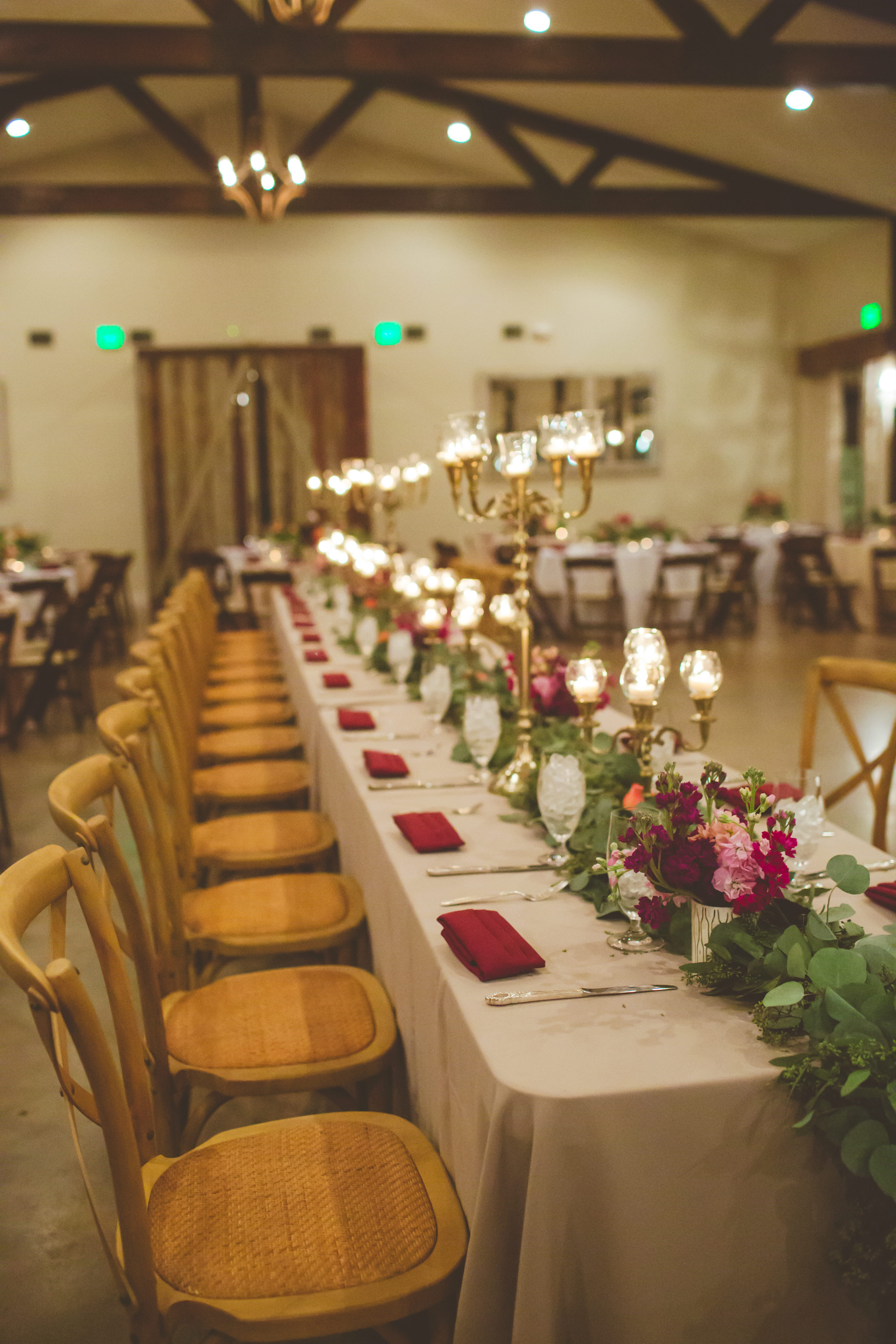 Caitlyn and Steven Wedding-reception2